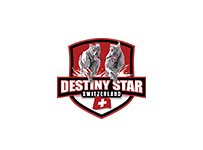 Logo Destiny Star Racing